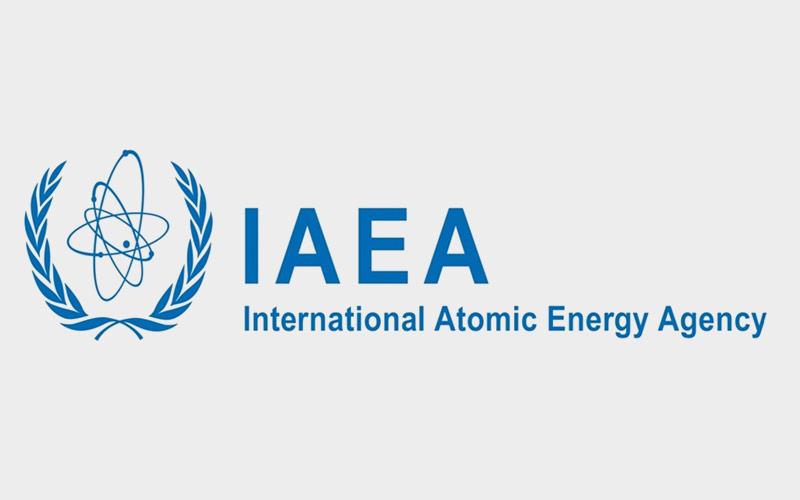 Participarea UTI la workshop-ul organizat de IAEA (Agenția Internațională de Energie Atomică)