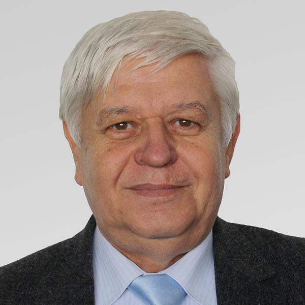 Gheorghe Ilie