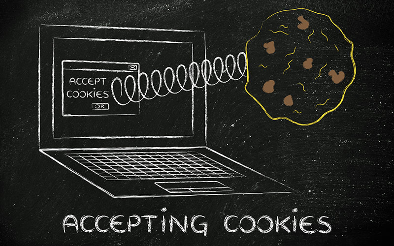 Privacy and Cookie Policy